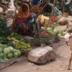 Marché aux légumes (3)- Dire Dawa