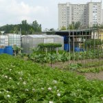 jardins-ouvriers-reims-france